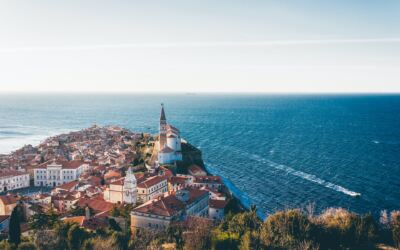 Microsoft Certified Trainer in Slovenia
